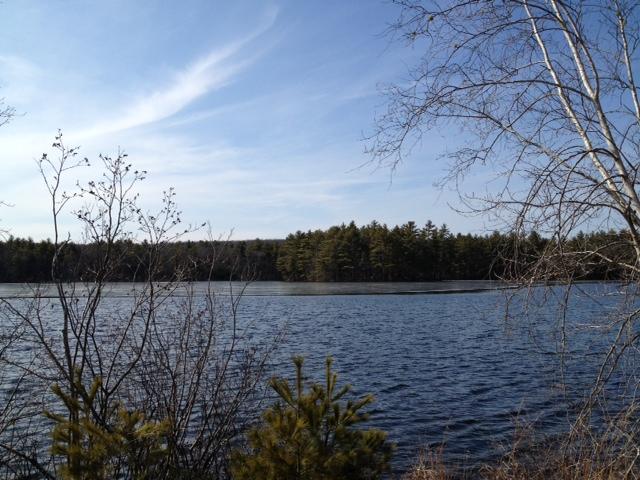 Lovely Eisenhower Lake