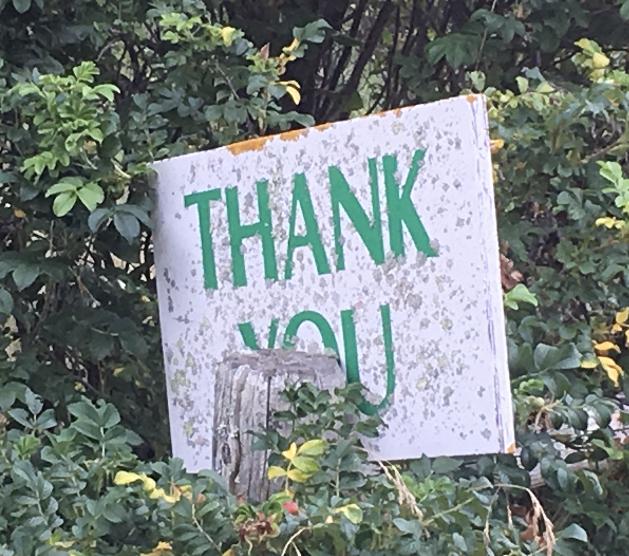 thank you sign satr